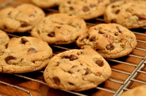 Chocolate_Chip_Cookies_-_kimberlykv.jpg