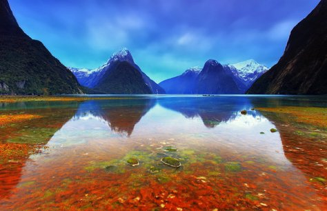 new-zealand-south-island-fiordland-national-park.jpg